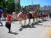 Paseos en burros o camellos